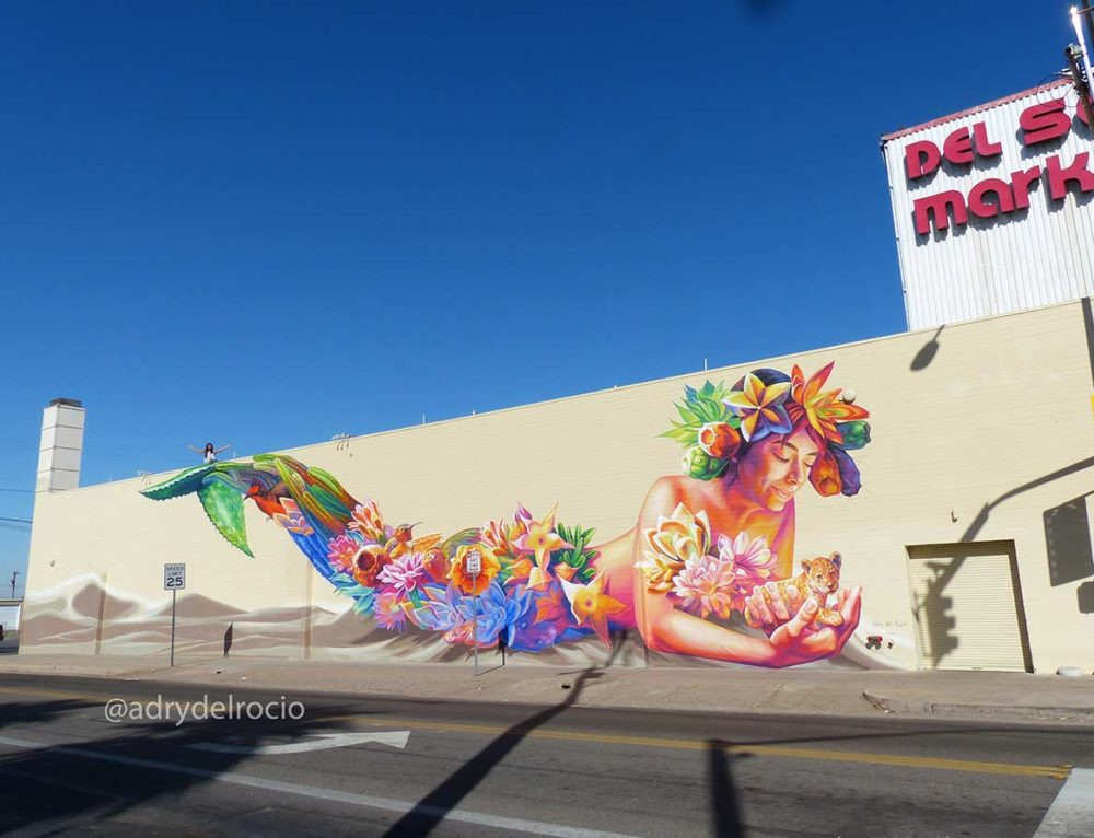 "Mural ""Desert Flower"" in Yuma, Arizona, USA"