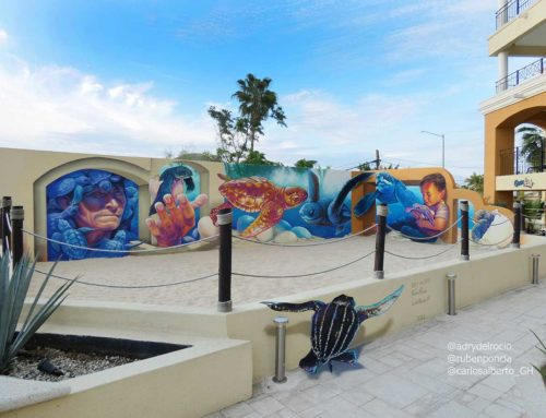 3D Mural at  Cabo San Lucas, Mexico